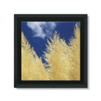 Bushes With Sky Background Framed Canvas 14X14 Wall Decor