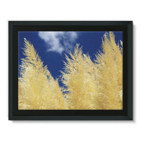 Bushes With Sky Background Framed Canvas 16X12 Wall Decor