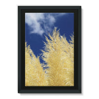 Bushes With Sky Background Framed Canvas 24X36 Wall Decor