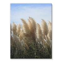 Bushes With Sky Background Stretched Canvas 12X16 Wall Decor