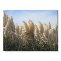 Bushes With Sky Background Stretched Canvas 16X12 Wall Decor