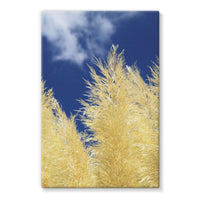 Bushes With Sky Background Stretched Canvas 20X30 Wall Decor