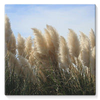 Bushes With Sky Background Stretched Eco-Canvas 10X10 Wall Decor