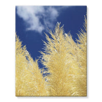 Bushes With Sky Background Stretched Eco-Canvas 11X14 Wall Decor