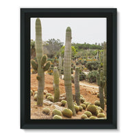 Cactus Plants Framed Canvas 12X16 Wall Decor