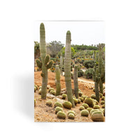 Cactus Plants Greeting Card 1 Prints