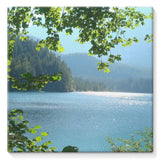 Calm Water Lake In Forests Stretched Canvas 10X10 Wall Decor