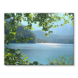 Calm Water Lake In Forests Stretched Canvas 24X18 Wall Decor