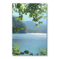 Calm Water Lake In Forests Stretched Canvas 24X36 Wall Decor