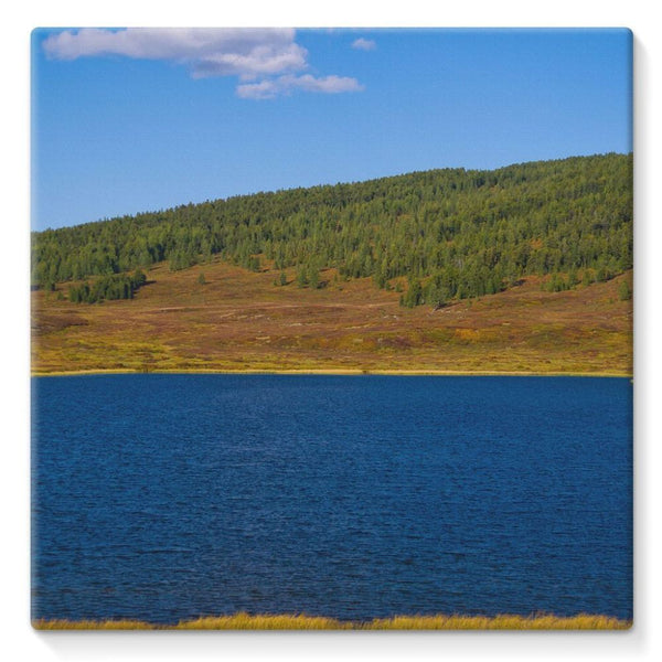 Calm Water Pond Stretched Canvas 10X10 Wall Decor