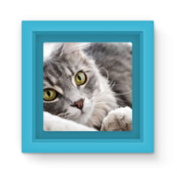 Cat Lying With Eyes Open Magnet Frame Light Blue Homeware