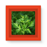 Close Picture Of Parsley Magnet Frame Red Homeware