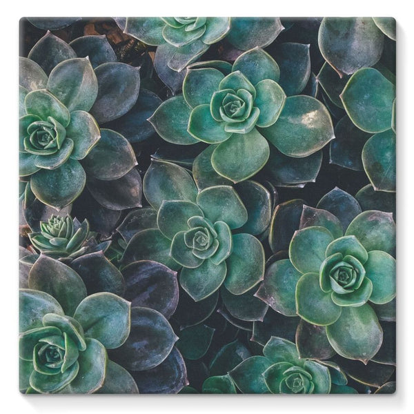 Close-Up Of Green Flowers Stretched Eco-Canvas 10X10 Wall Decor