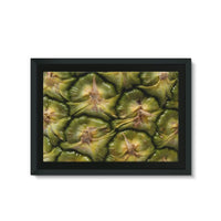 Closeup Of A Pineapple Skin Framed Eco-Canvas 36X24 Wall Decor