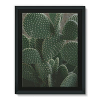 Closeup Of Cactus Framed Canvas 12X16 Wall Decor