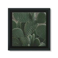 Closeup Of Cactus Framed Canvas 14X14 Wall Decor