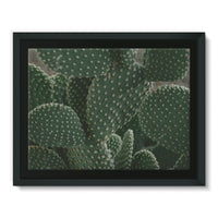 Closeup Of Cactus Framed Canvas 16X12 Wall Decor