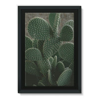 Closeup Of Cactus Framed Canvas 20X30 Wall Decor