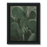 Closeup Of Cactus Framed Canvas 24X32 Wall Decor