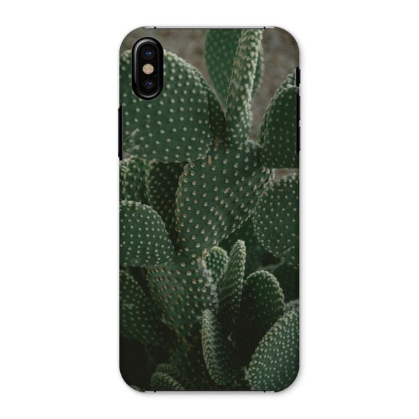 Closeup Of Cactus Phone Case Iphone X / Snap Gloss & Tablet Cases