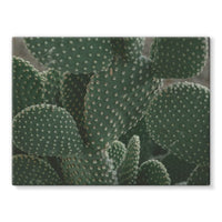 Closeup Of Cactus Stretched Eco-Canvas 24X18 Wall Decor