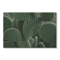 Closeup Of Cactus Stretched Eco-Canvas 30X20 Wall Decor