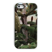 Closeup Picture A Pine Tree Phone Case Iphone 5/5S / Tough Gloss & Tablet Cases