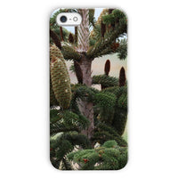 Closeup Picture A Pine Tree Phone Case Iphone 5C / Snap Gloss & Tablet Cases