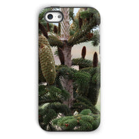 Closeup Picture A Pine Tree Phone Case Iphone 5C / Tough Gloss & Tablet Cases