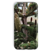 Closeup Picture A Pine Tree Phone Case Iphone 6 Plus / Tough Gloss & Tablet Cases