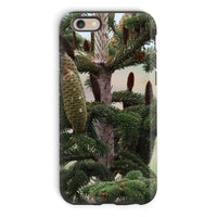 Closeup Picture A Pine Tree Phone Case Iphone 6 / Tough Gloss & Tablet Cases