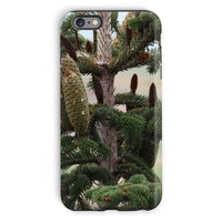Closeup Picture A Pine Tree Phone Case Iphone 6S Plus / Tough Gloss & Tablet Cases