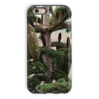 Closeup Picture A Pine Tree Phone Case Iphone 6S / Tough Gloss & Tablet Cases