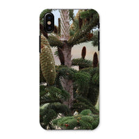 Closeup Picture A Pine Tree Phone Case Iphone X / Snap Gloss & Tablet Cases