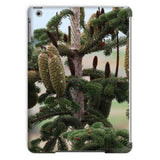 Closeup Picture A Pine Tree Tablet Case Ipad Air 2 Phone & Cases