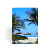 Coconut Trees Greeting Card 1 Prints