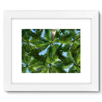 Coconut Trees Leaves Pattern Framed Fine Art Print 16X12 / White Wall Decor