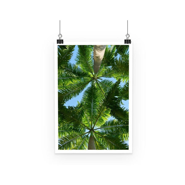 Coconut Trees Leaves Pattern Poster A3 Wall Decor