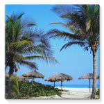 Coconut Trees Stretched Canvas 10X10 Wall Decor