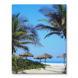 Coconut Trees Stretched Eco-Canvas 11X14 Wall Decor
