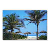 Coconut Trees Stretched Eco-Canvas 36X24 Wall Decor
