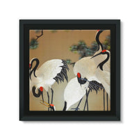 Colorful Painting Of Egrets Framed Canvas 14X14 Wall Decor