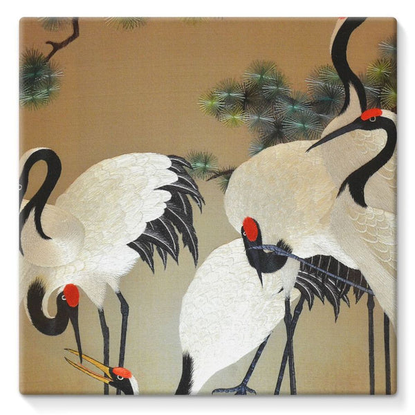 Colorful Painting Of Egrets Stretched Canvas 10X10 Wall Decor