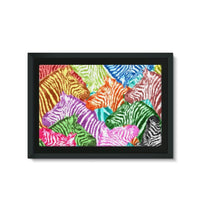 Colorful Zebras In Africa Framed Canvas 30X20 Wall Decor