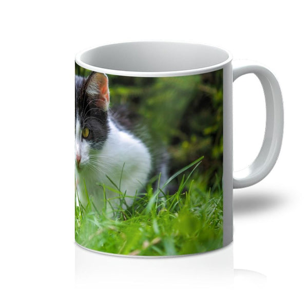 Cute Cat In Yard Closeup Mug 11Oz Homeware