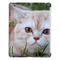 Cute Cat In Yard Closeup Tablet Case Ipad 2 3 4 Phone & Cases