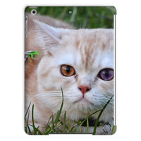 Cute Cat In Yard Closeup Tablet Case Ipad Air Phone & Cases