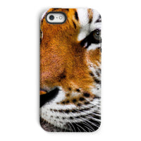 Cute Close-Up Picture Tiger Phone Case Iphone 5/5S / Tough Gloss & Tablet Cases
