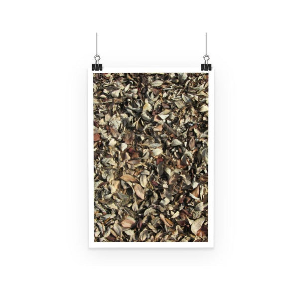 Dead Laves On Ground Autumn Poster A3 Wall Decor