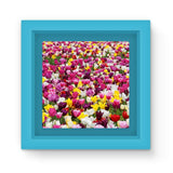 Different Tulips In Holland Magnet Frame Light Blue Homeware